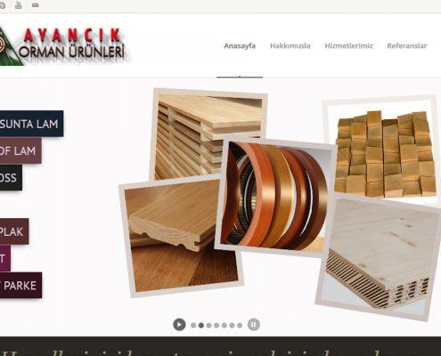 web tasarım Web Tasarım web design 3 1 495x400