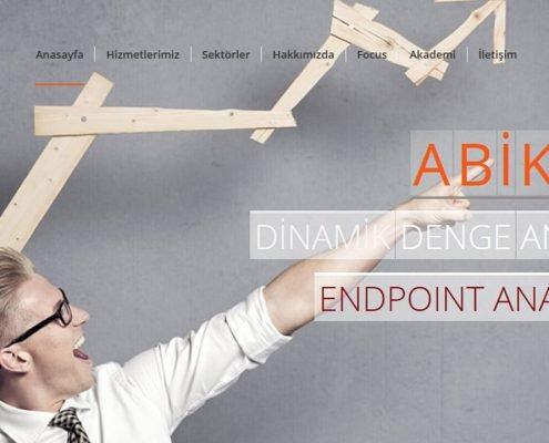 web tasarım Web Tasarım web design 9 1 495x400