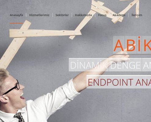 fuar reklam organizasyon Hizmeterimiz web design 9 1 495x400 fuar reklam organizasyon Hizmeterimiz web design 9 1 495x400